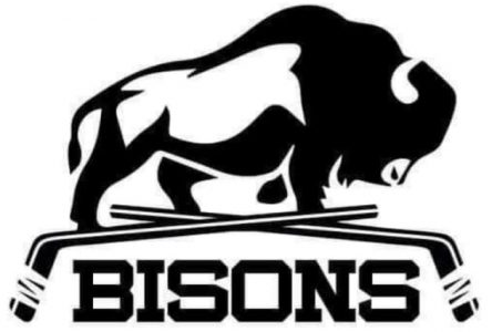 Hockey senior: les Bisons au bord de l'élimination